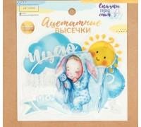 Набор ацетатных высечек с фольгированием «Наш малыш», 11 × 12 см